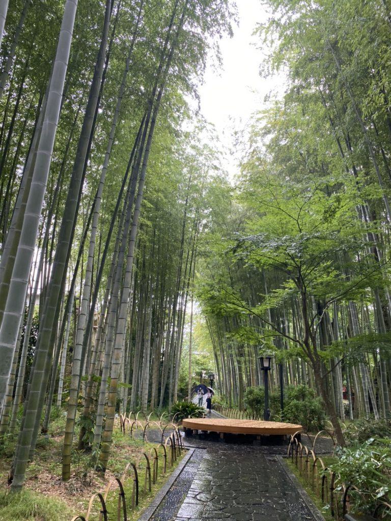 修善寺温泉宙SORA(竹林の小径)