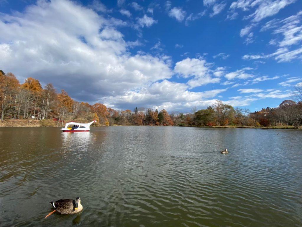 塩沢湖ボート